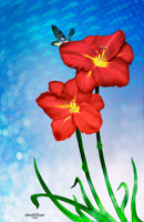 Digital Painting of two red lillies with a butterfly landing on one of the flowers